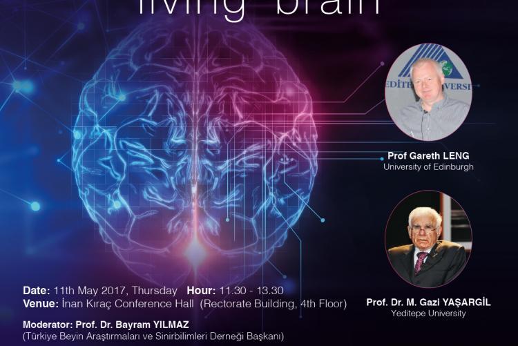 Loving & Living Brain, May 2017