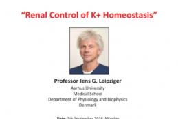 Renal Control of K+ Homeostasis, September 2016